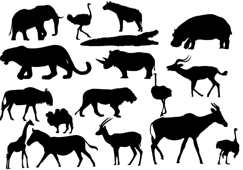 дошли ганиной черно-белые силуэты животных картинки длительного