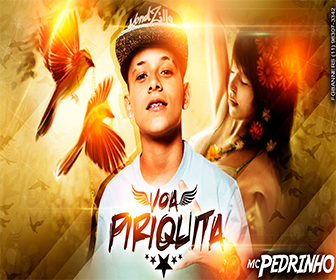 ACAPELLA EXCLUSIVA MC PEDRINHO – A PIRIQUITA VOA (DJ 2P MIX)