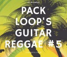 PACK LOOP'S GUITAR REGGAE #5