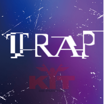 Sample Pack TRAP (COMPLETO 808, BASS, CLAP, FX, HI-HATS, KICKS, SNARES, SYNTHS)