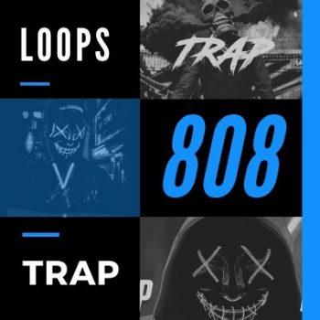 PACK LOOPS 808 TRAP 🎵