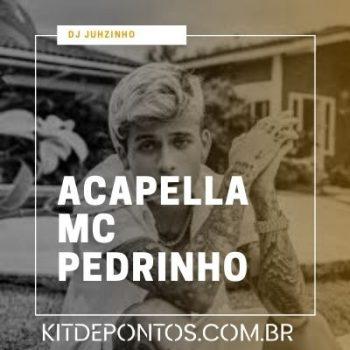 Acapella Mc Pedrinho – Cai com a Buc$% (Dj Juhzinho)