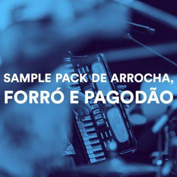 SAMPLE PACK DE ARROCHA, FORRÓ E PAGODÃO 2021 (KIT COM BATERIAS)