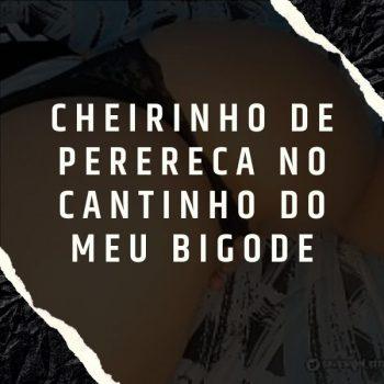 ACAPELA MC TH – Ô SORTE ( FOOOOOODA ) – CHEIRINHO DE PERERECA NO CANTINHO DO MEU BIGODE